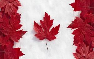 カナダ国旗を模したもの
